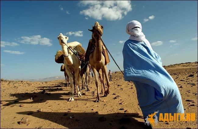 Ливийские черкесы (видео)