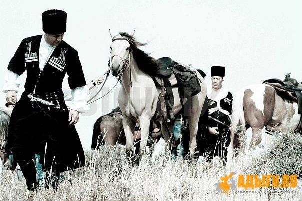 О поселении горцев между казаками Закубанского края