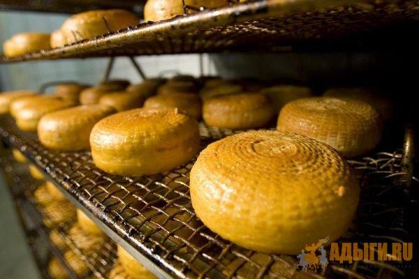 Черкесский сыр - Матэкъуае