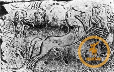 Хеттские колесничие изображённые египтянами