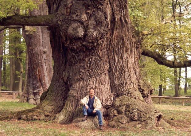 Дуб был священным деревом у многих народов